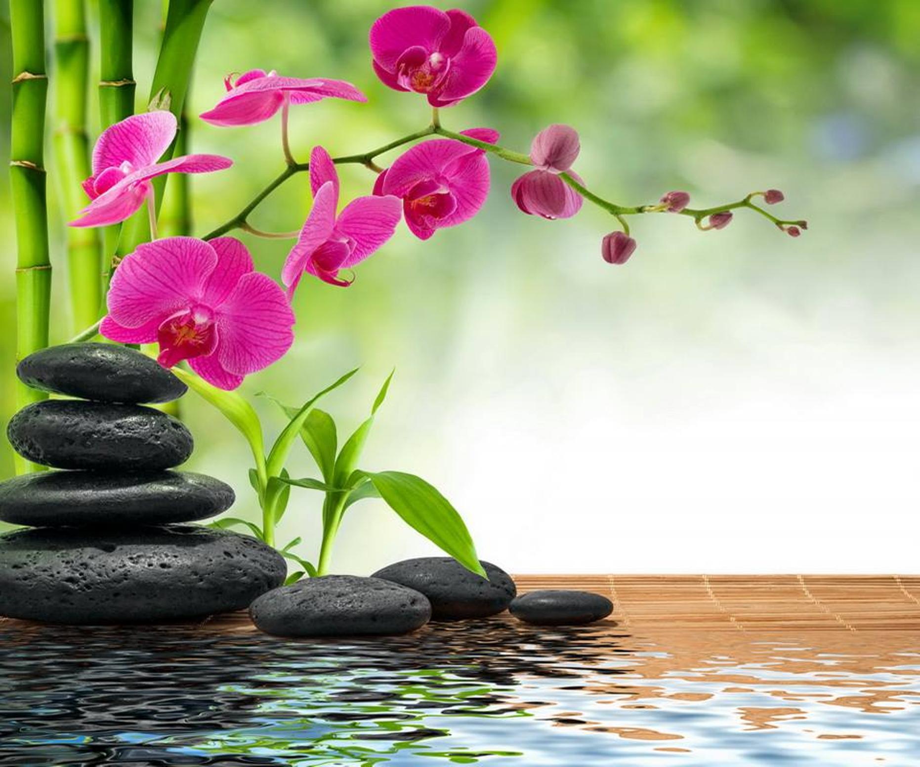 5 consjejos feng shui bienestar - Consejos de feng shui ...